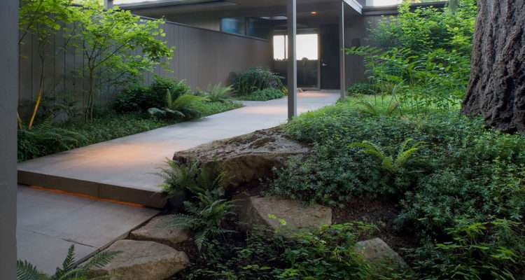 Mid Century Modern Landscape Design Ideas Pool Plants